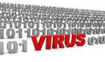 Алгоритм работы компьютерных вирусов