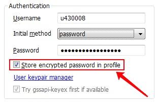 Bitvise SSH Client, но для начала установим парольную аутентификацию